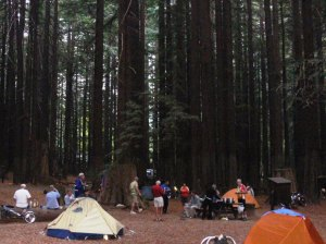 Camping among the redwoods.  [Photo: Dan Farrell]