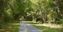 The Withlacoochee is one of the longest paved rail trails in Florida. For much of its length, it passes under a canopy of trees.