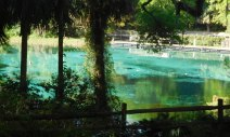 Rainbow Springs State Park contains Florida's third-largest spring and preserves the gardens and other remains from a 1930s tourist attraction. We always rent canoes here for a leisurely paddle down the river.