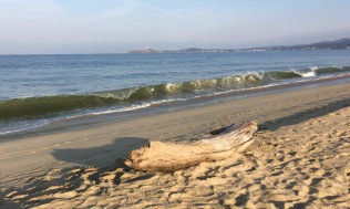 . . . And my last morning walk on the beach at Half Moon Bay.