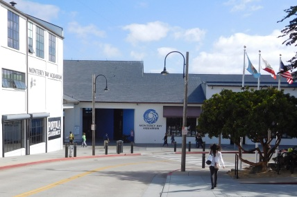 The trail runs right beside Cannery Row and the terrific Monterey Bay Aquarium, which occupies the former Hovden Cannery.