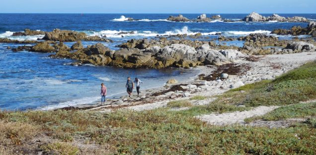 I retraced my route to the trail's western end at Lover's Point in Pacific Grove and continued on the coastal road back to Asilomar. Those last few miles were among the most beautiful, as I rode past beaches and tide pools.