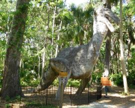"Okay, not quite an actual wildlife sighting. A T-Rex at Dunlawton Sugar Mill Gardens, south of Daytona, site of an extinct tourist attraction. Note the ""Do Not Feed..."" sign."