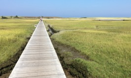 This long boardwalk over a bayside tidal marsh leads out to the beach near Sandwich on Cape Cod.