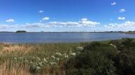 Gordons Pond, Cape Henlopen State Park, Delaware.