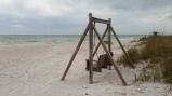 Honeymoon Island State Park, on the Gulf Coast of Florida.