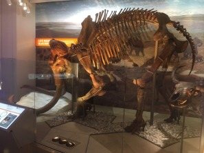 A woolly mammoth (shown here) and mastodon are also on display.