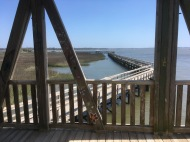 The boardwalk in Port Royal, SC, from the observation tower.