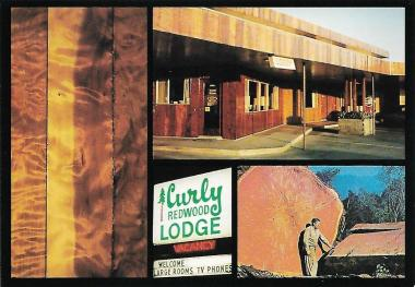 The Curly Redwood Lodge near Crescent City, California, was built from the wood of a single curly redwood tree, one that has curly rather than straight grain. The motel opened in 1957.