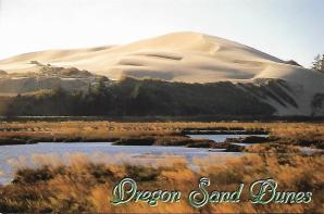 Not what you might expect on the Oregon Coast: a 40-mile stretch of sand dunes, some reaching 500 feet in height, in the Oregon Dunes National Recreation Area south of Florence.